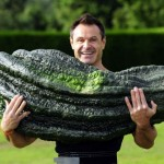 "Zucchini Need Live Up to Their Name: ""ini"" Means Small, Very Small"