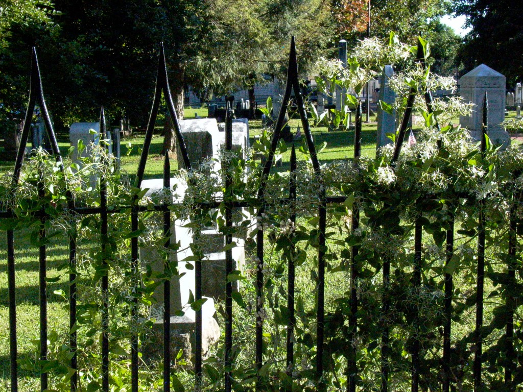 Old cemetary in the historic district where Thaddeus Stevens,  radical anti-slavery Pennsylvania congressman is buried.  Photo: Nathan Hoyt