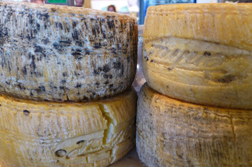 Various stages of pecorino (sheep cheese), Sardinia's biggest export. Credit: Nathan Hoyt