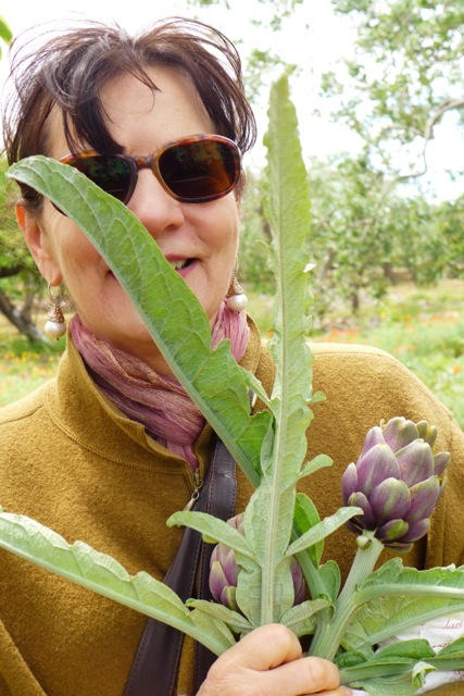 In Antonio Bartolomeo's garden, Toritto, a bouquet of artichokes. | Photo: Nathan Hoyt