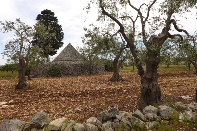 A conical stone 18th century peasant hut, called a trull, outside of town. | Photo: Nathan Hoyt