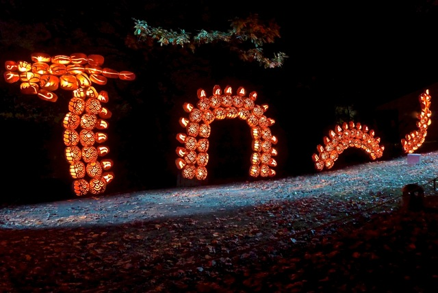 A glowing giant sea serpent in a jack-o'-lantern sea.